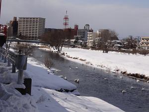 写真④_sasaki0209.jpg