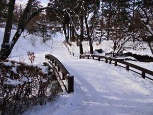 写真⑩_sasaki0209.jpg