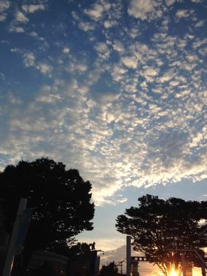 akimoto_blog20140926.JPG