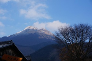 shirai20150116_写真5.JPG